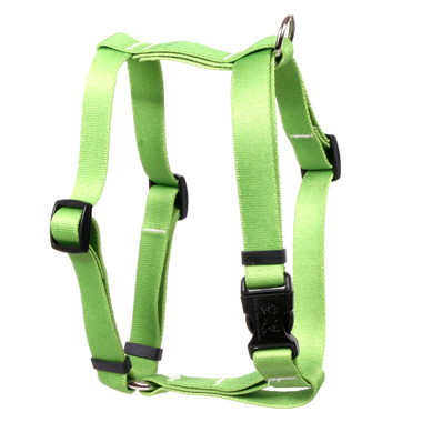 """Solid Spring Green Roman Style """"H"""" Dog Harness"""