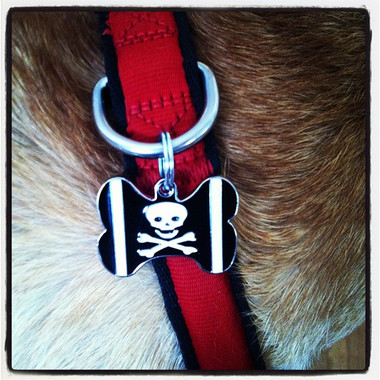 BLACK Skull & Crossbones BONE Shaped Engraved Pet ID Tag