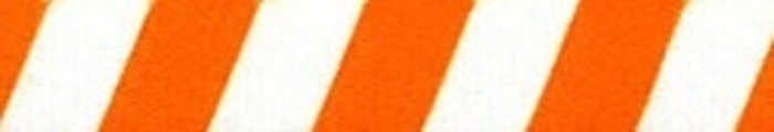 Team Spirit Orange and White EZ-Grip Dog Leash