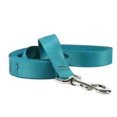 Solid Teal Dog Leash