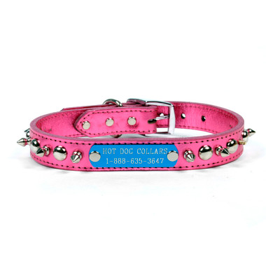 Spiked Dog Collar With Personalized Name Plate Hot Dog