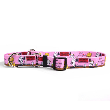 I Hate Valentines Day Martingale Dog Collar