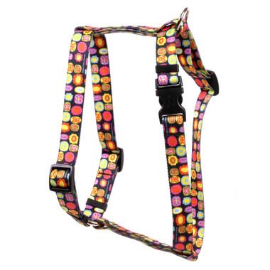 "Bright Fun Roman Style ""H"" Dog Harness"