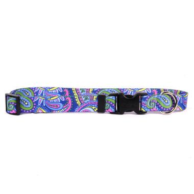 Paisley Power Dog Collar