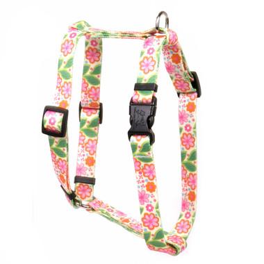Flower Patch Roman Style Dog Harness