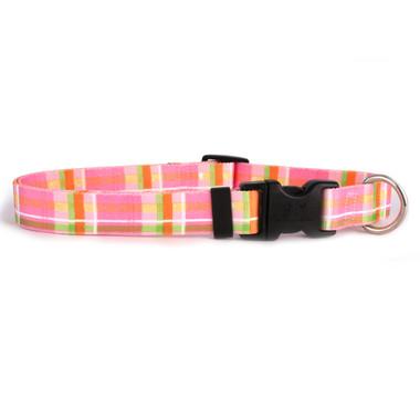 Madras Pink Break Away Cat Collar