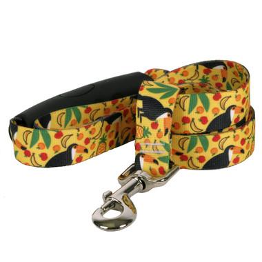 Fruity Tucan EZ-Grip Dog Leash