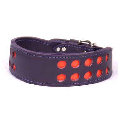 purple leather dog collar