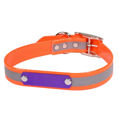 Dog Collar With Id Plate