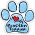 I Love My Boston Terrier BLUE Scribble Paw Magnet