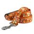 Festive Butterfly Orange EZ-Grip Dog Leash