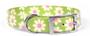 Green Daisy Elements Dog Collar