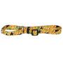 Fruity Tucan Martingale Dog Collar