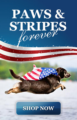 2015-patriotic-dogs.jpg