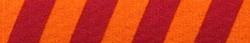 Team Spirit Maroon and Orange Coupler Dog Leash