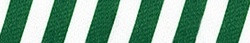 Team Spirit Green and White Coupler Dog Leash