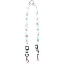 Daisy Chain Blue Coupler Dog Leash
