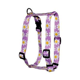 "Lavender Daisy Roman Style ""H"" Dog Harness"