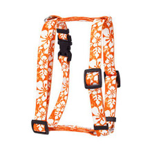 "Island Floral Orange Roman Style ""H"" Dog Harness"
