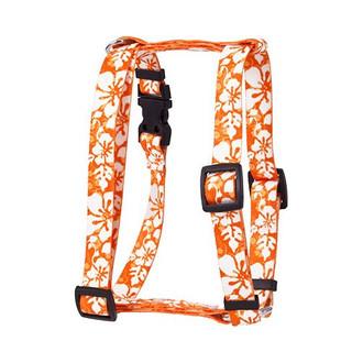 "Island Floral Orange Roman Style ""H"" Dog Harness"
