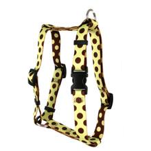 "Green and Brown Polka Dot Roman Style ""H"" Dog Harness"