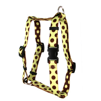 "Green and Brown Polka Dot Roman Style ""H"" Dog Harness"