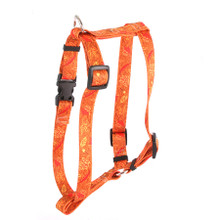 "Fall Leaves Roman Style ""H"" Dog Harness"