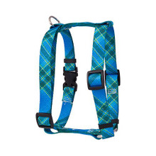 "Blue Kilt Roman Style ""H"" Dog Harness"