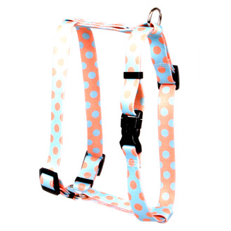"Blue and Melon Polka Dot Roman Style ""H"" Dog Harness"