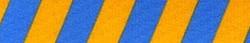 Team Spirit Gold and Blue EZ-Grip Dog Leash