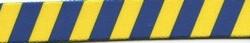 Team Spirit Blue and Yellow EZ-Grip Dog Leash