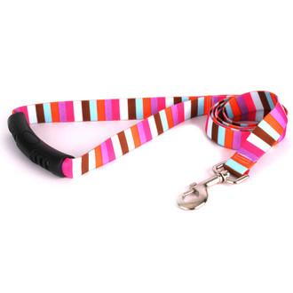 Multi-Stripe EZ-Grip Dog Leash