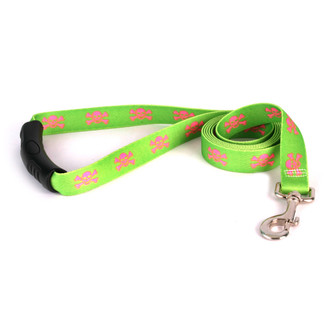 Green and Pink Skulls EZ-Grip Dog Leash