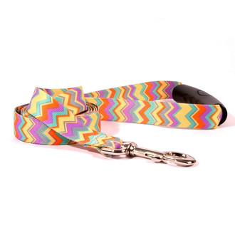 Chevy Stripe Multi EZ-Grip Dog Leash