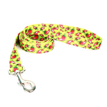 Hot Peppers Dog Leash