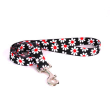 Black Daisy Dog Leash