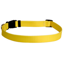 Solid Yellow Dog Collar