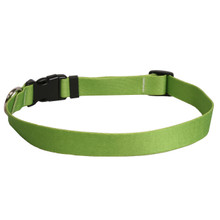 Solid Spring Green Dog Collar