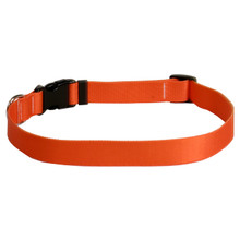 Solid Orange Dog Collar