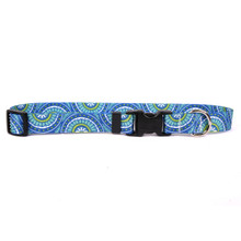Radiance Blue Dog Collar