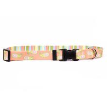 Melon Paisley Dog Collar