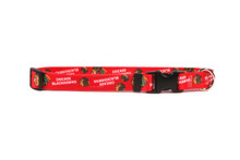 Chicago Blackhawks Dog Collar