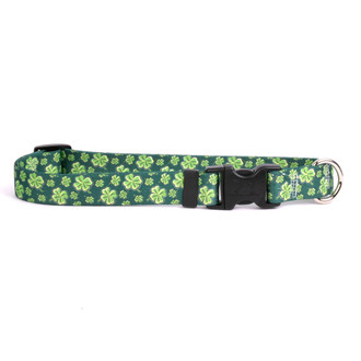 4 Leaf Clover Dog Collar