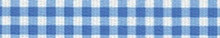 Gingham Blue Waist Walker