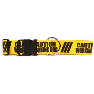 2 Inch - Caution Working Dog Dog Collar