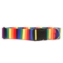 2 Inch Wide Rainbow Dog Collar