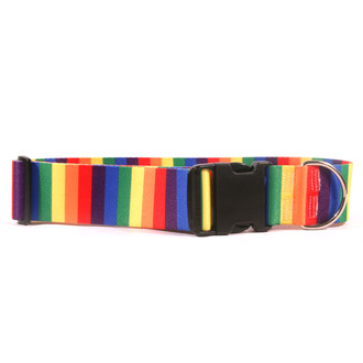 2 Inch Wide Rainbow Dog Collar