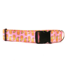 2 Inch Wide Pink Paisley Dog Collar
