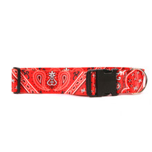 2 Inch Wide Red Bandana Dog Collar