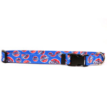 Detroit Pistons Dog Collar